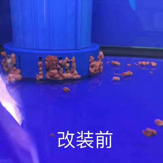 改鱼缸下过滤水族箱鱼缸灯管系统 太原龙鱼论坛 太原龙鱼第5张
