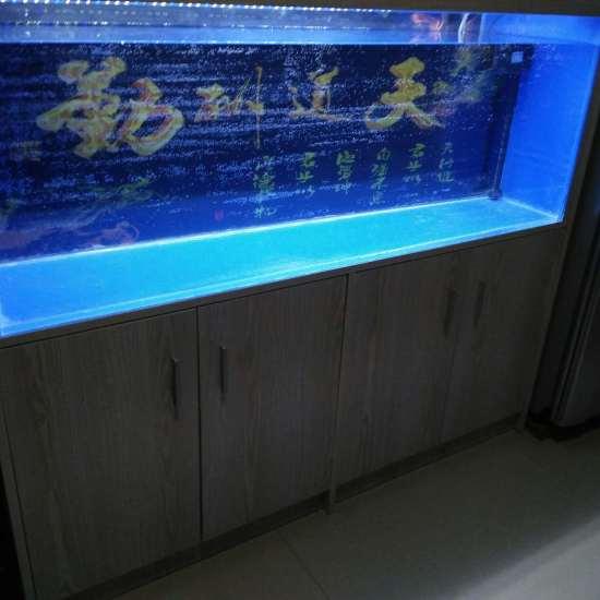 #小绵羊·大气量#碰碰运气,正好缺个气泵[ciya] 观赏鱼常见疾病 南通水族批发市场第2张