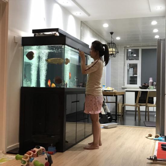 好和谐 观赏鱼常见疾病 南通水族批发市场第3张