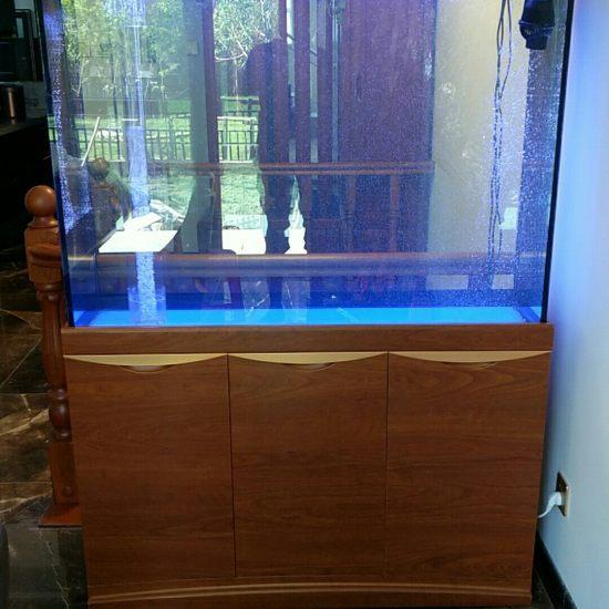 天津哪买的龙鱼好军哥专利带鱼马桶的鱼缸 天津龙鱼论坛 天津龙鱼第6张