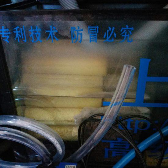 # 过滤元帅·就选钟爱#我的鱼缸是下滤,说实话我对现在的鱼缸很不满意,当时买的时 天津龙鱼论坛 天津龙鱼第4张