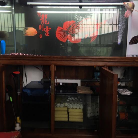各种装备,各种灯 温州龙鱼论坛 温州龙鱼第1张