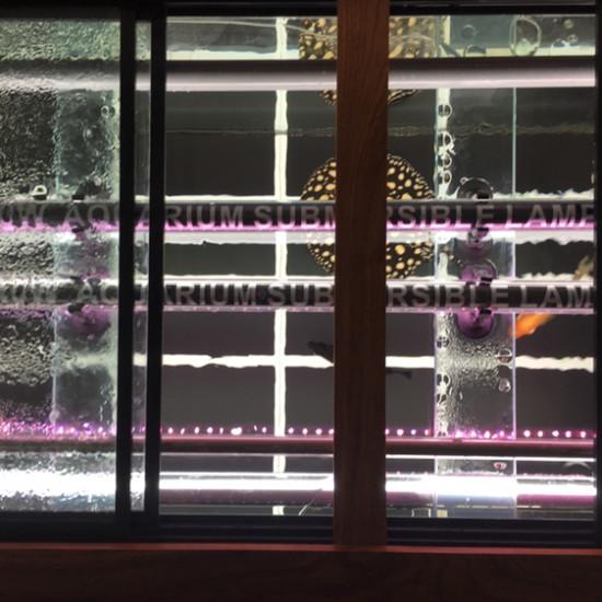 各种装备,各种灯 温州龙鱼论坛 温州龙鱼第5张