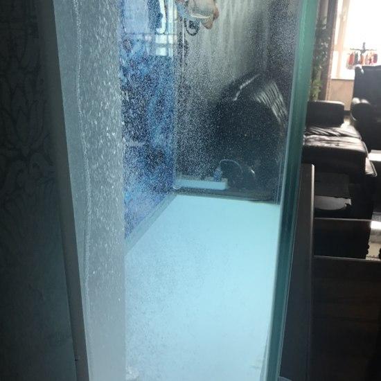 新换的气泵 这泡泡是不是有点多啊 满缸都是泡泡! 南京龙鱼论坛 南京龙鱼第3张