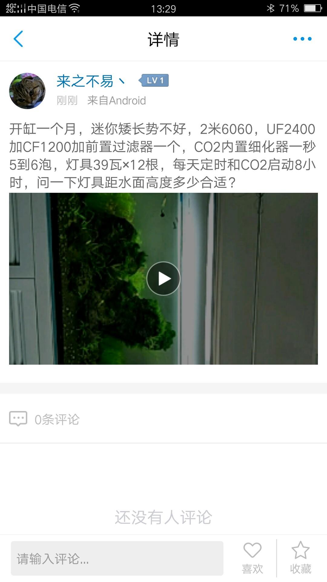 新开水草缸2006060 深圳观赏鱼 深圳龙鱼第2张