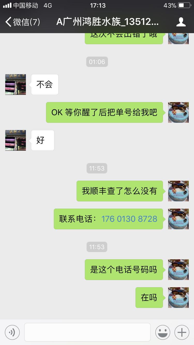 杭州白化大白鲨批发骗子不得好死 杭州龙鱼论坛 杭州龙鱼第4张