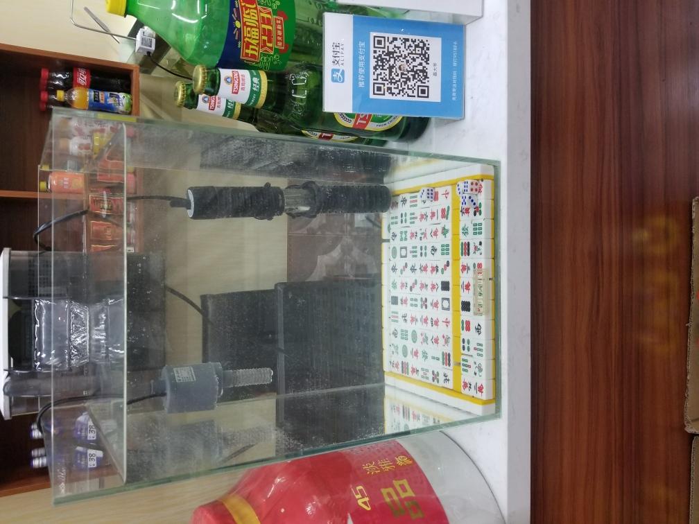 看看不说话水草造景 北京龙鱼论坛