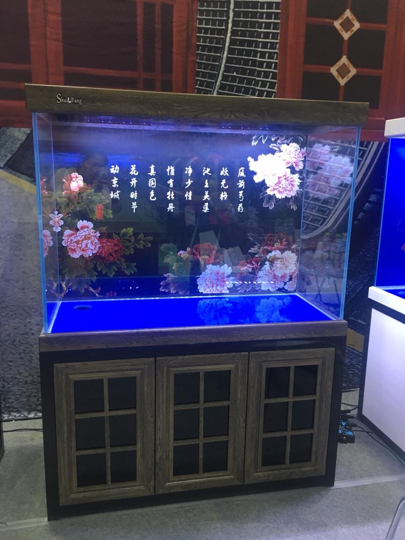 山东济南会展中心 西宁观赏鱼 西宁龙鱼第3张