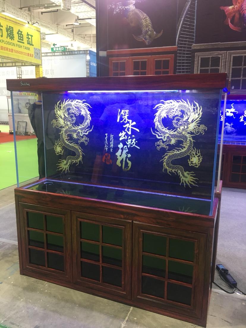 山东济南会展中心 西宁观赏鱼 西宁龙鱼第7张