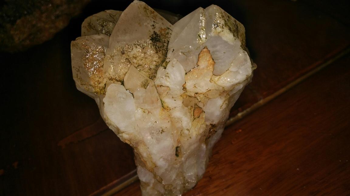 渭南大白鲨今天和这两块石头结了缘 渭南水族批发市场 渭南龙鱼第1张