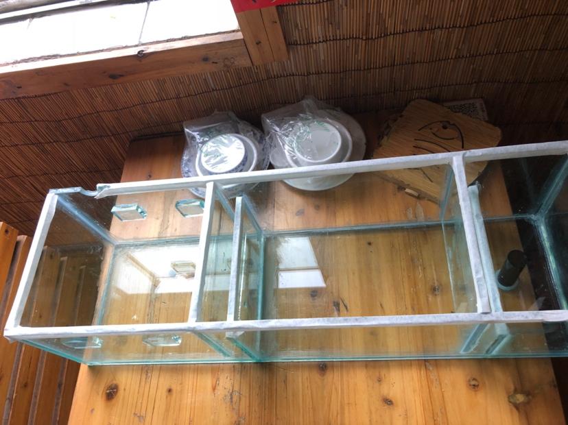 第二个上滤缸水族器材 西安观赏鱼信息 西安博特第5张