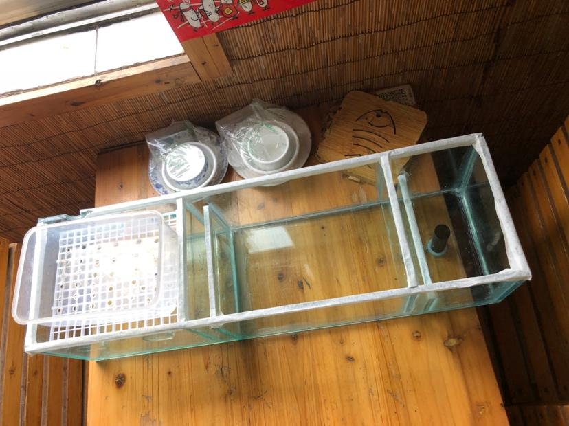 第二个上滤缸水族器材 西安观赏鱼信息 西安博特第2张