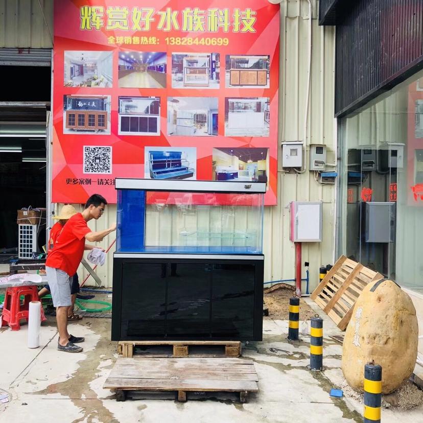 分享:云南友的私人定制 绵阳龙鱼论坛 绵阳水族批发市场第2张