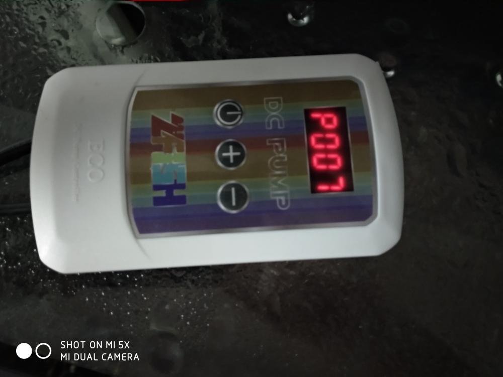 ZFISH水泵试用反馈 上海龙鱼论坛 上海龙鱼第28张