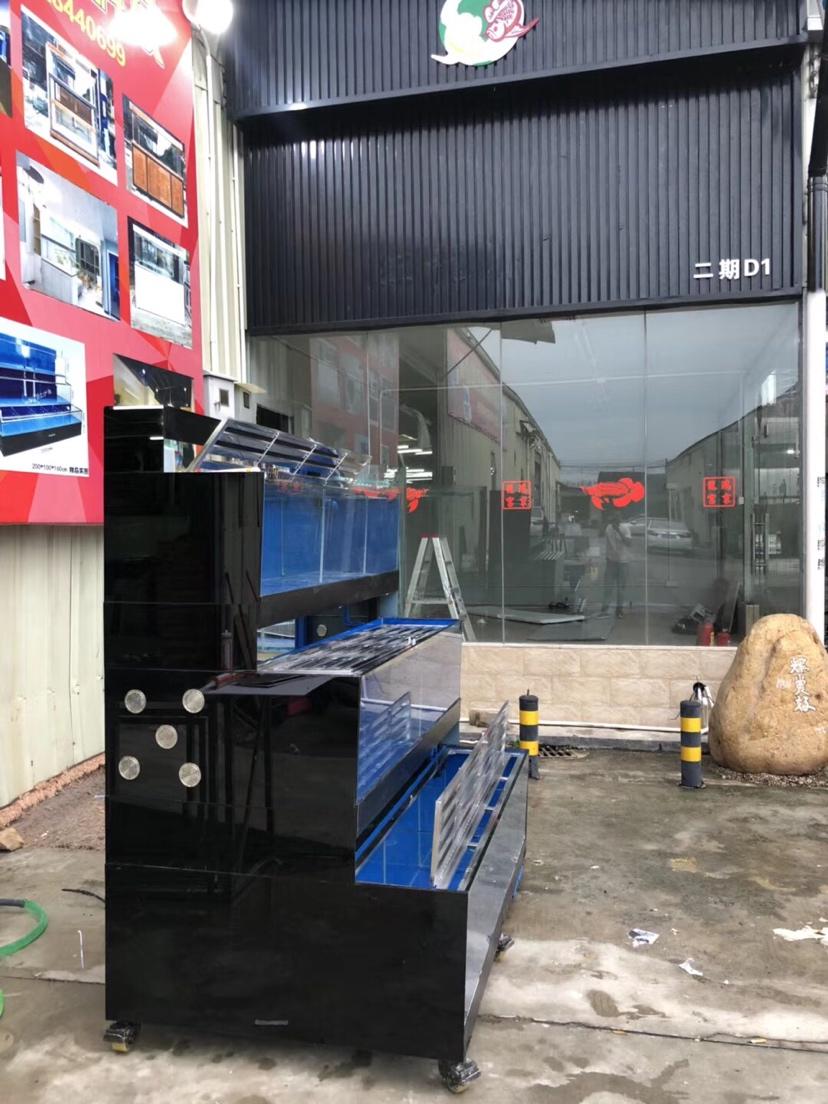 分享:香港海鲜池 温州水族批发市场 温州龙鱼第4张