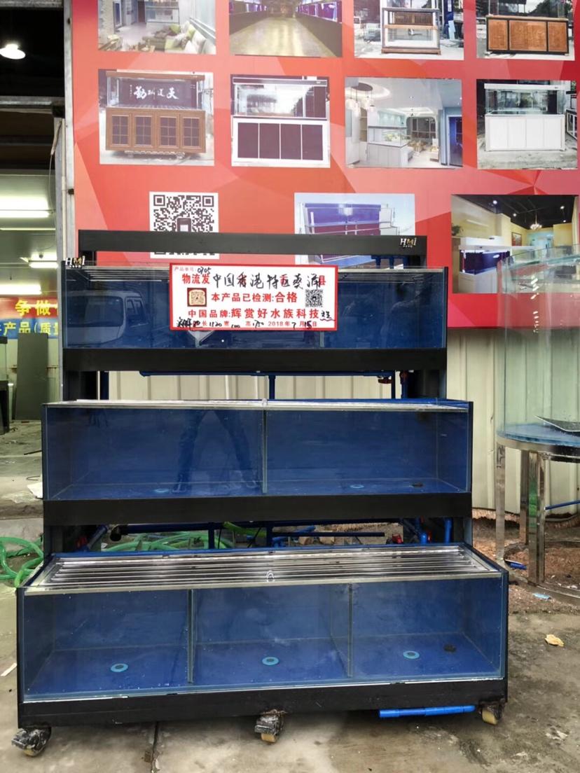 分享:香港海鲜池 温州水族批发市场 温州龙鱼第5张