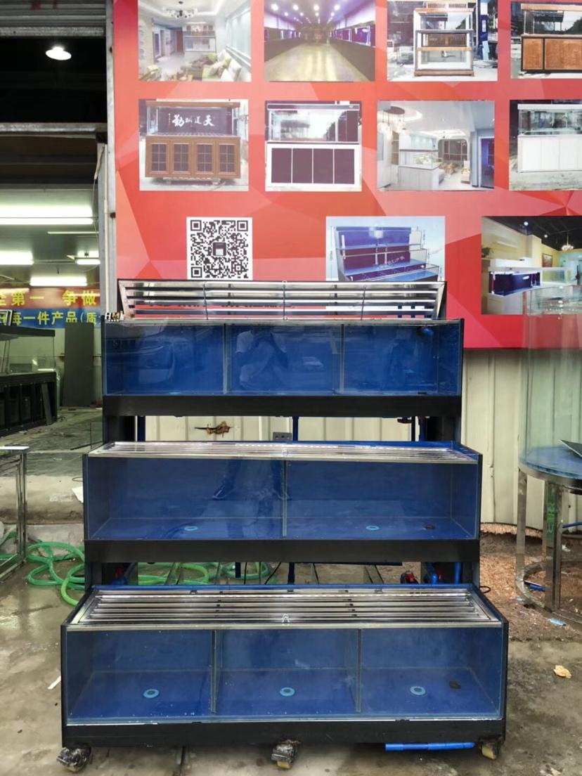 分享:香港海鲜池 温州水族批发市场 温州龙鱼第2张