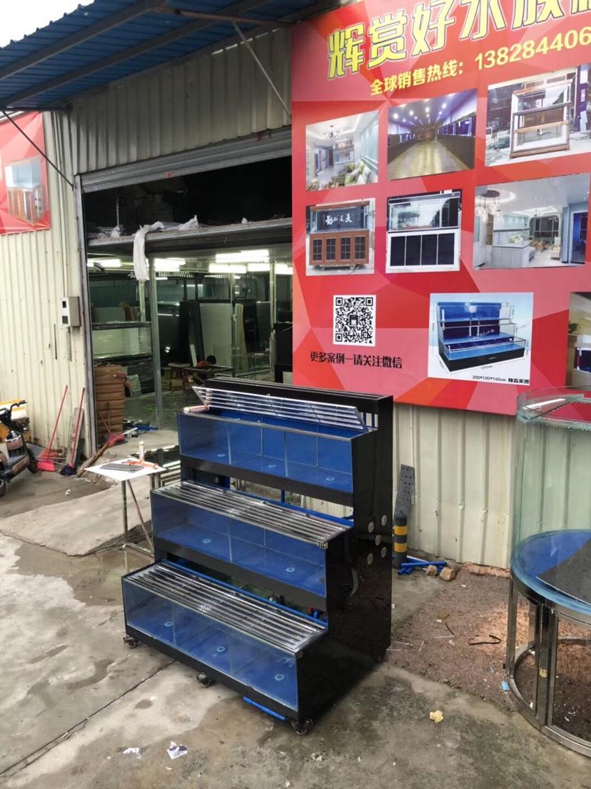 分享:香港海鲜池 温州水族批发市场 温州龙鱼第3张