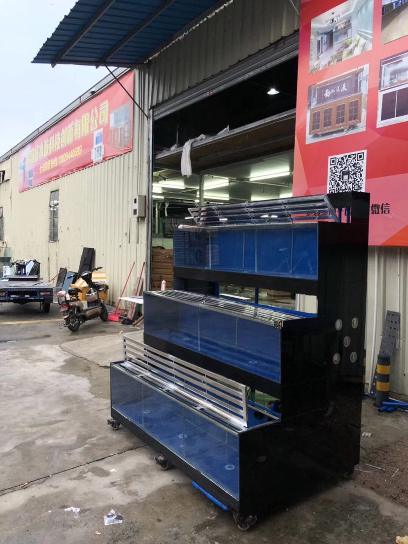 分享:香港海鲜池 温州水族批发市场 温州龙鱼第7张
