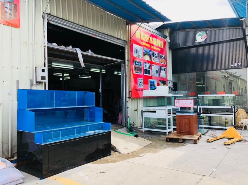 分享:广东梅州兴宁友的:海鲜池 营口龙鱼论坛 营口龙鱼第4张