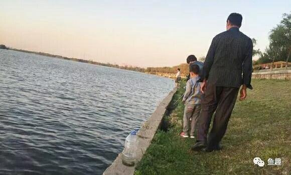 龙鱼零食只有想不到没有不能喂的 福州观赏鱼 福州龙鱼第1张