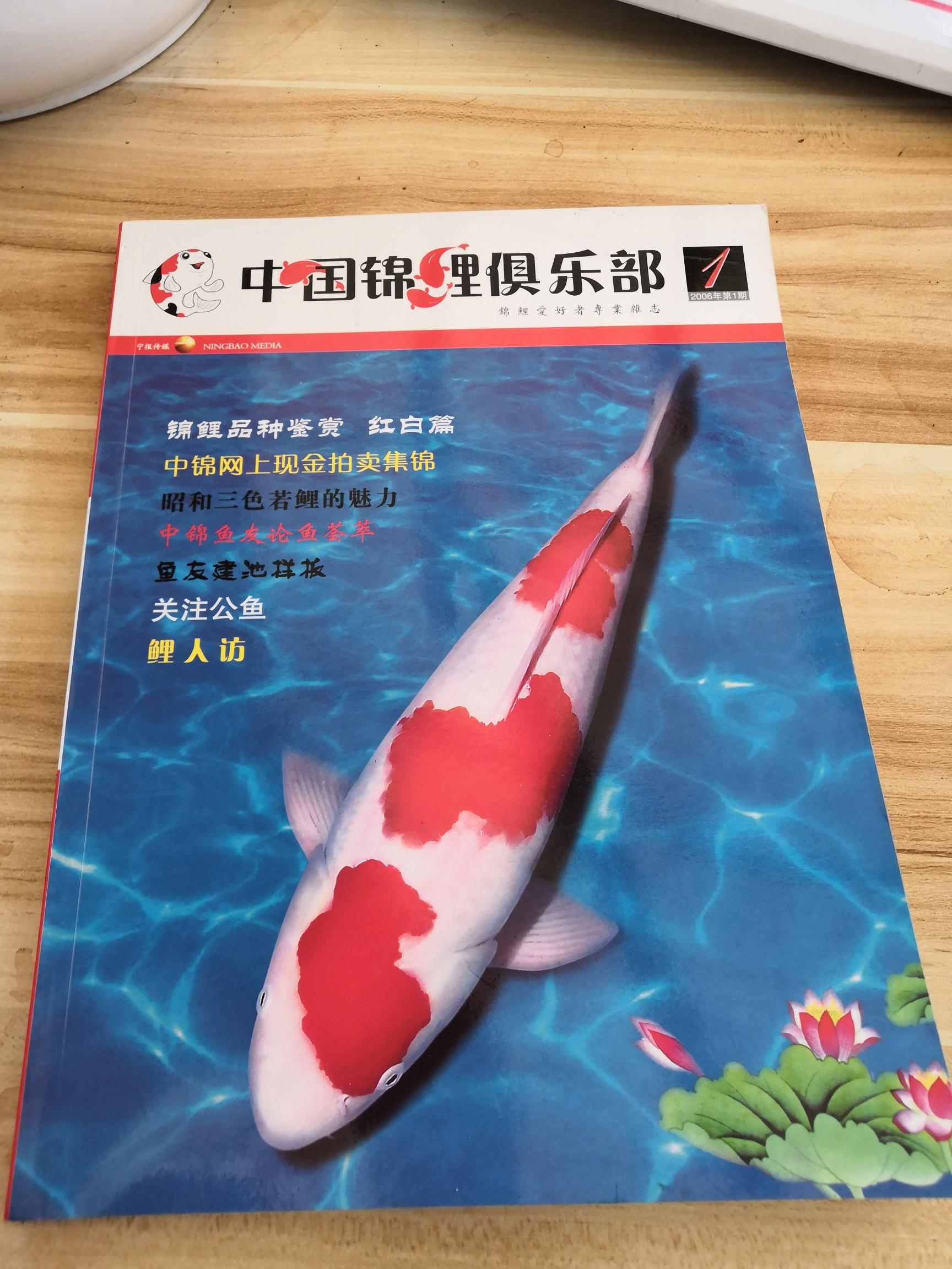 中锦创刊号第一期