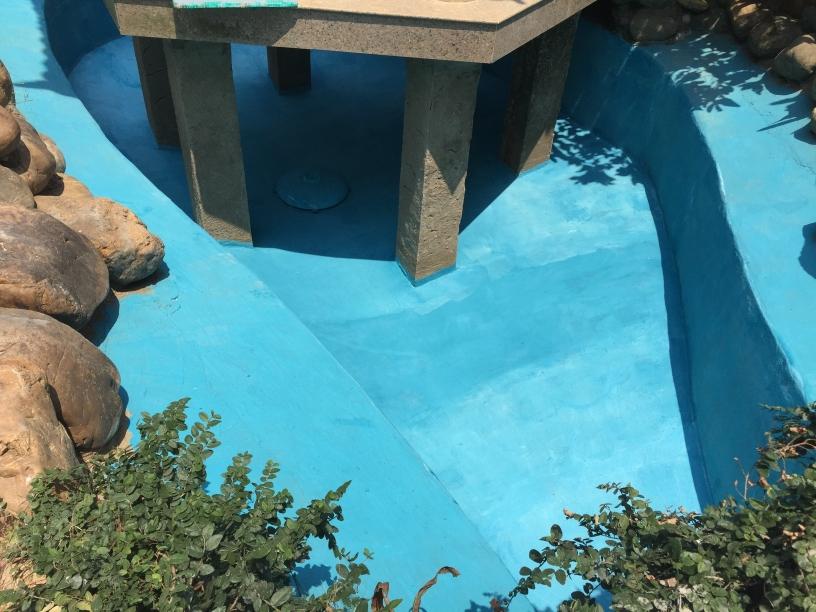 达州哪个水族店有沉木建池进度 达州水族批发市场 达州水族批发市场第1张