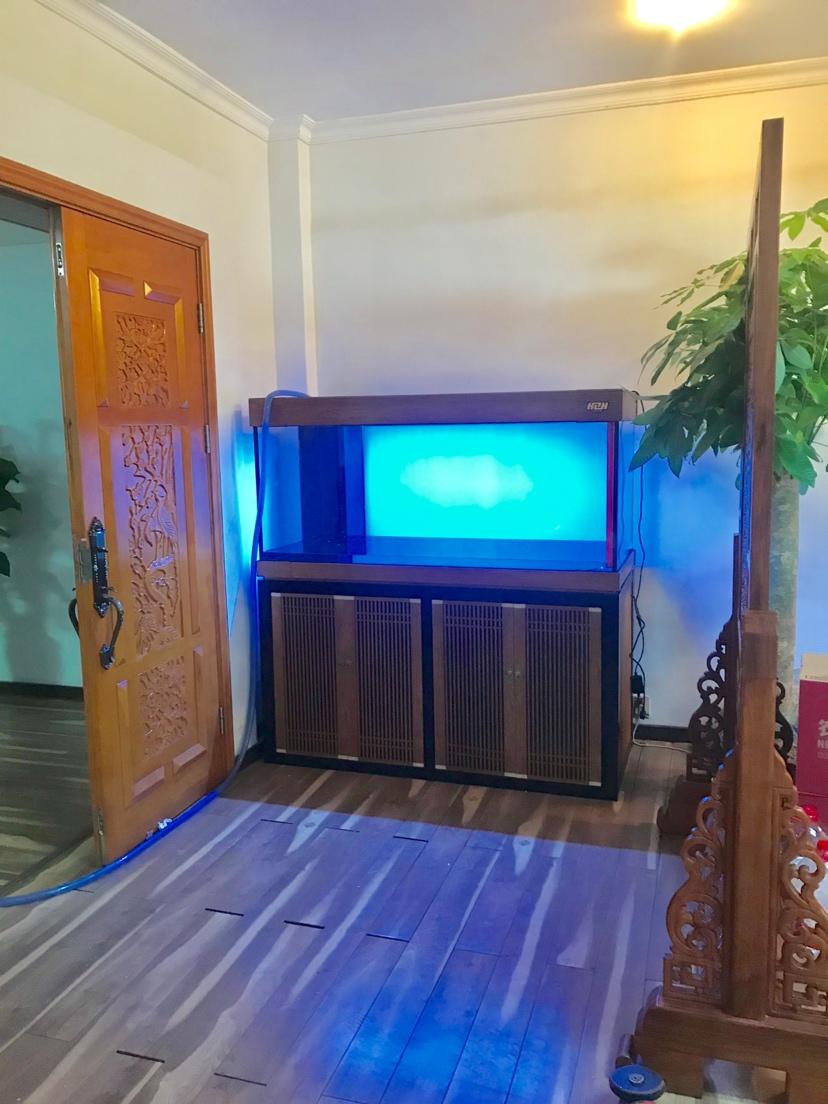 广州市海中队现场安装:新中国风 长沙龙鱼论坛 长沙龙鱼第3张