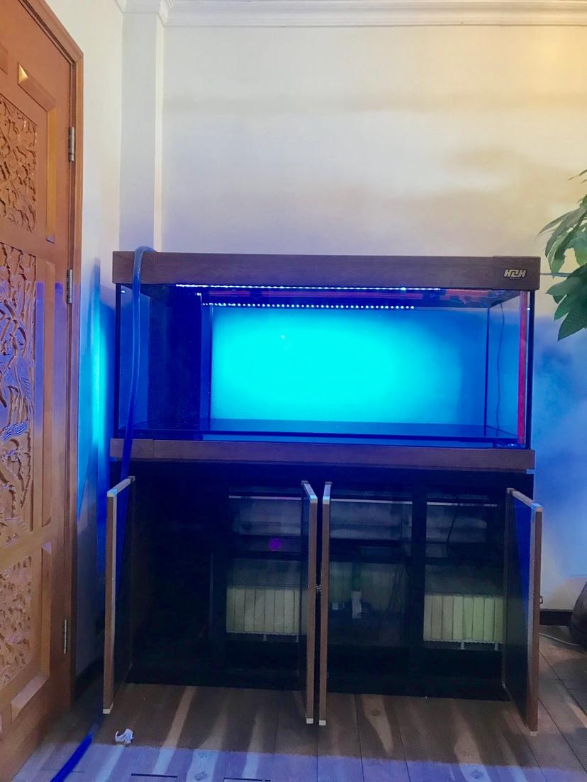 广州市海中队现场安装:新中国风 长沙龙鱼论坛 长沙龙鱼第6张