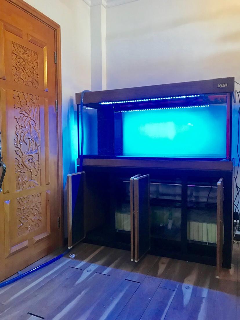 广州市海中队现场安装:新中国风 长沙龙鱼论坛 长沙龙鱼第5张
