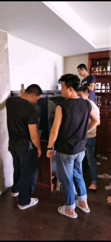 龙缸也要与时俱进 杭州龙鱼论坛 杭州龙鱼第7张