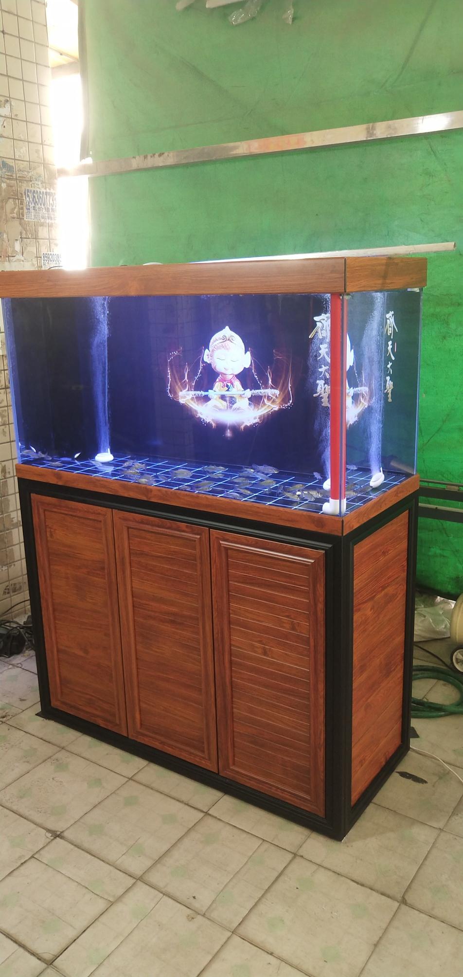 榆林印尼红龙超白缸 榆林龙鱼论坛 榆林水族批发市场第2张