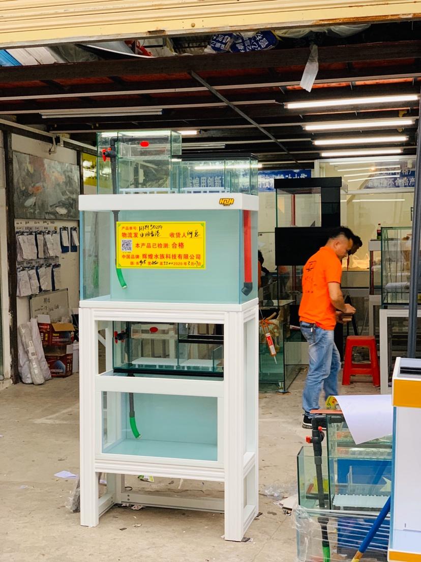 出:中国香港双层复式叠的诱惑 哈尔滨水族批发市场 哈尔滨龙鱼第2张