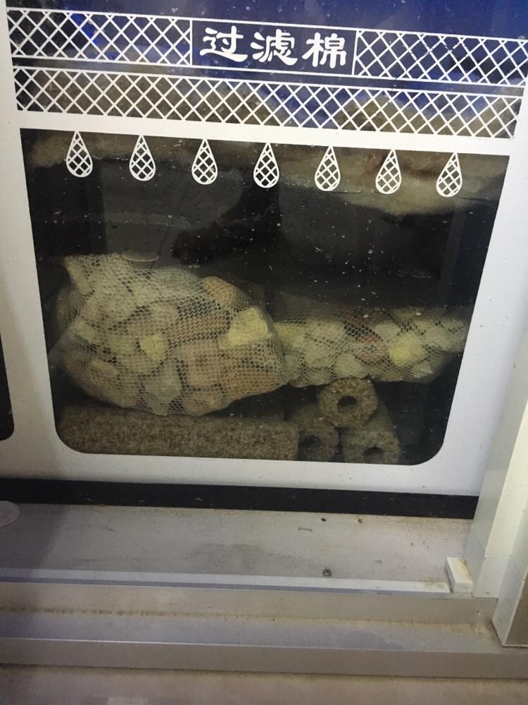 空气缸一直弄不来,大神们看看需要什么 绵阳龙鱼论坛 绵阳水族批发市场第2张